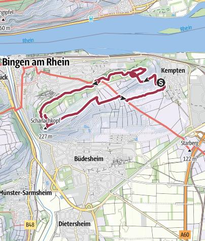 Karte /   Rochusberg-Bingen am 06.01.13