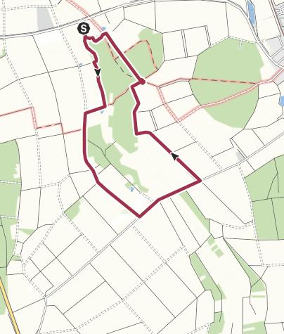 地图 / Wanderung im Grettstädter Ried