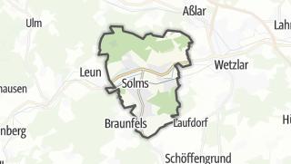 Cartina / Solms