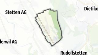 地图 / Bellikon