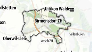 Cartina / Birmensdorf (ZH)