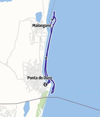 Karte / Dolphin Swim 1 (18.08.13)