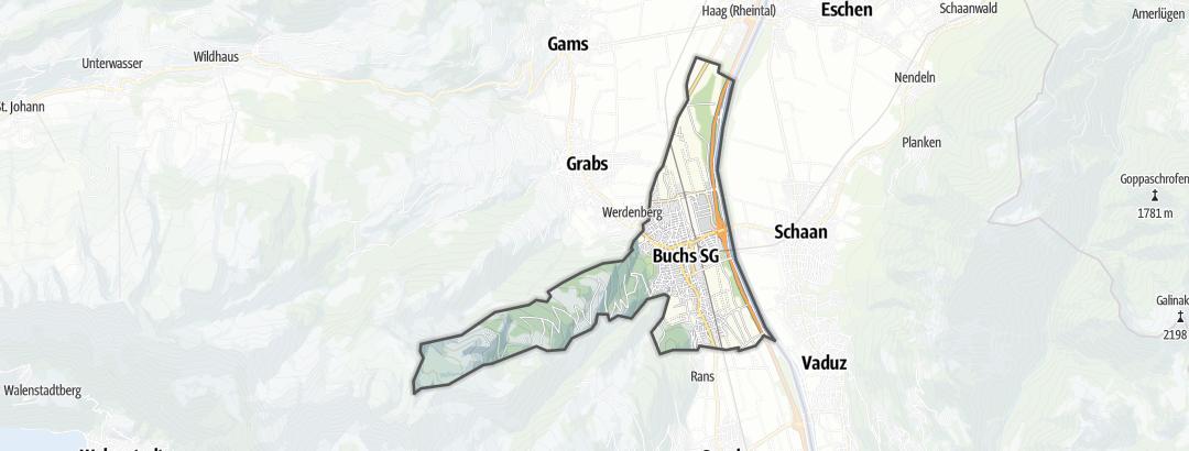 Carte / Circuits de randonnée - Buchs (SG)