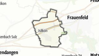 Cartina / Gachnang
