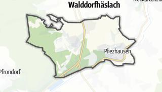 Cartina / Pliezhausen