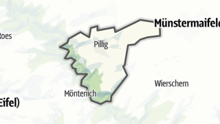 地图 / Pillig