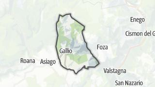 Carte / Gallio