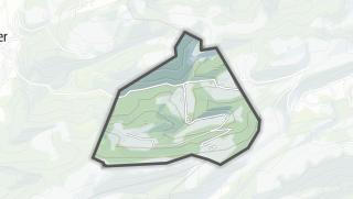 Cartina / Schelten