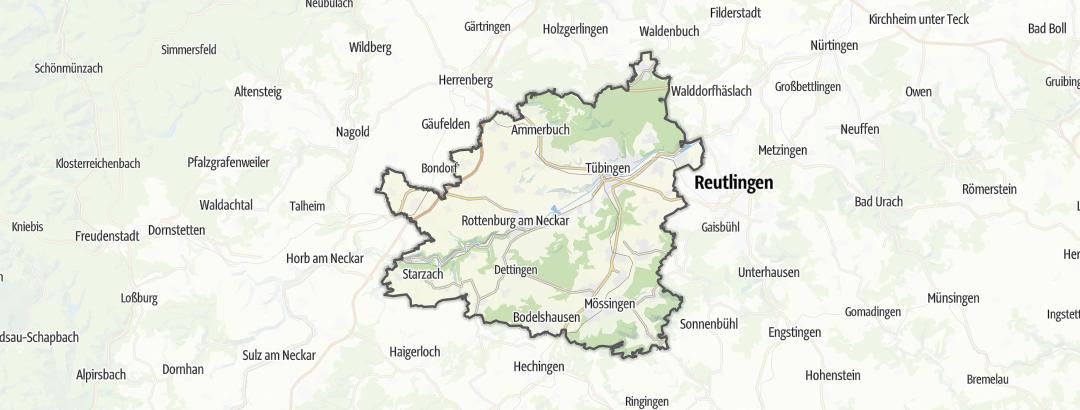 Map / Runs in Tuebingen