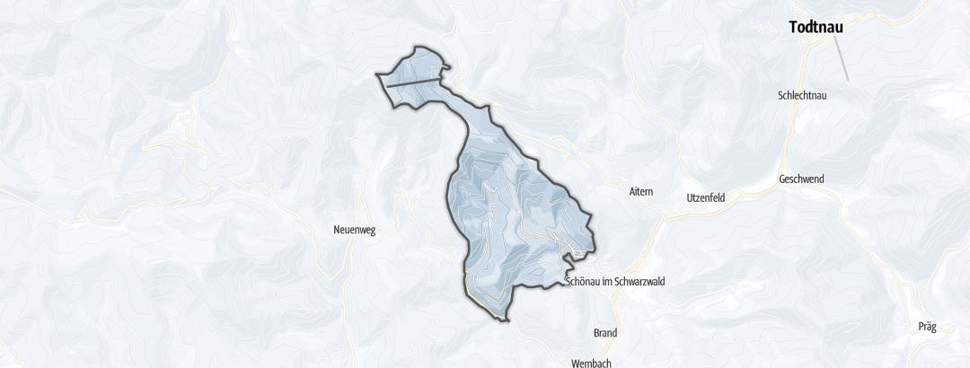 Kart / Skiturer i Schoenenberg