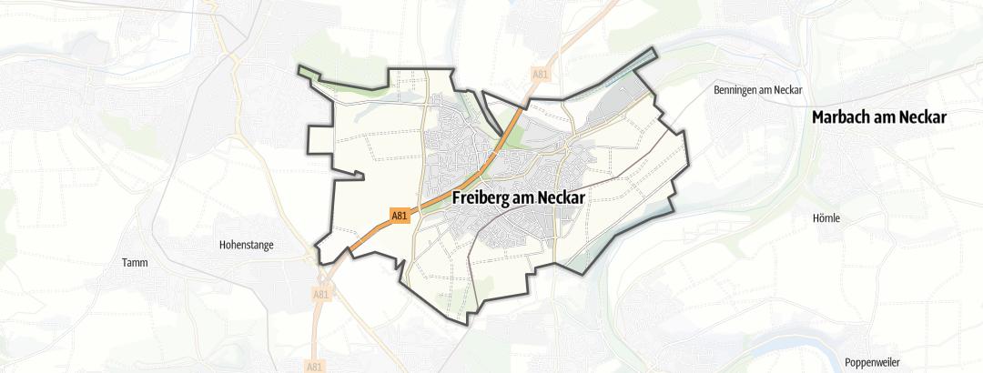 Map / Hikes in Freiberg am Neckar