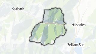 Carte / Viehhofen