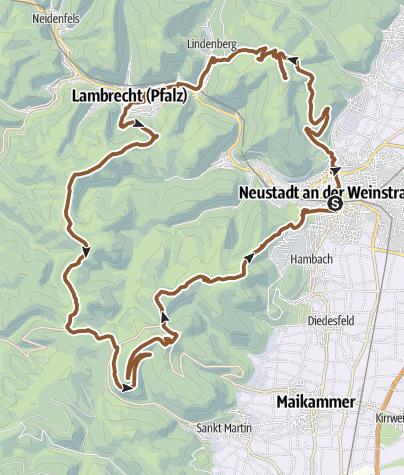 Karte / MTB - Tour Neustadt Weinbiet Hellerhütte Totenkopf Kalmit Hohe Loog Neustadt