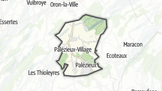 Карта / Palézieux
