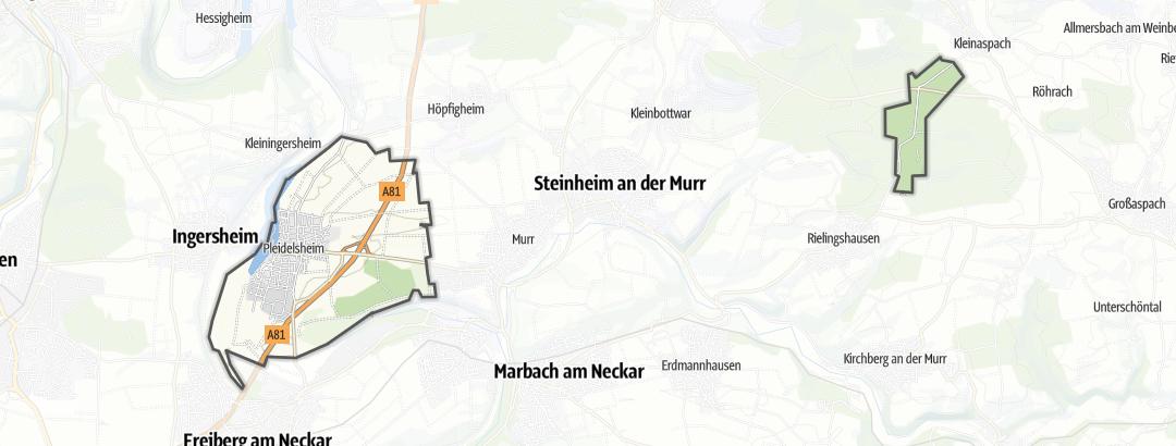 Map / Hikes in Pleidelsheim