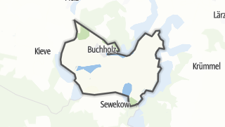 Carte / Buchholz