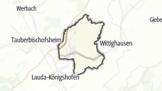Cartina / Grunfeld