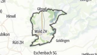 Mapa / Wald (ZH)