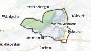 地图 / Münster-Sarmsheim