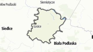 Mappa / Losicki