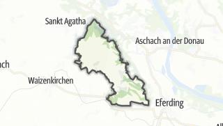Carte / Stroheim