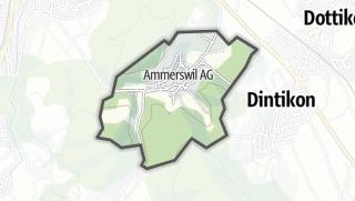 מפה / Ammerswil