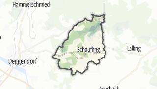Carte / Schaufling