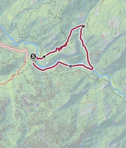 Karte / Forêt de Bonifatu - Boucle des Ficaghiola- Rundwanderweg Ficaghiola