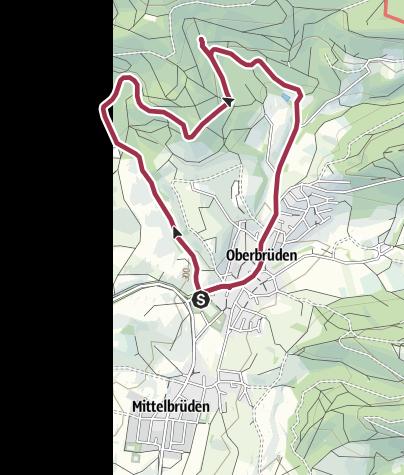 Karte / Auenwald-Oberbrüden - Mammutbäume