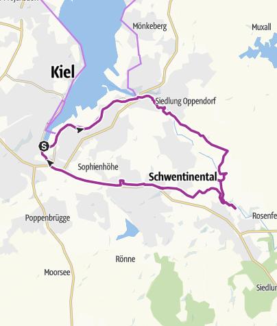 Singletrail schleswig holstein