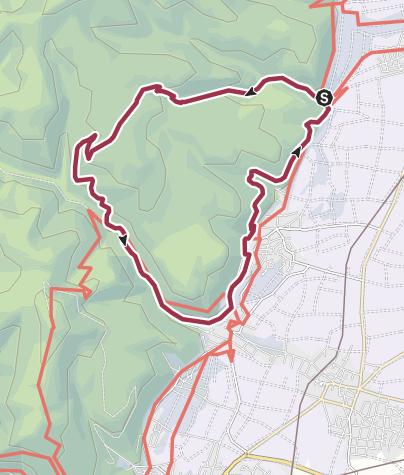Karte / Eselweg Deidesheim