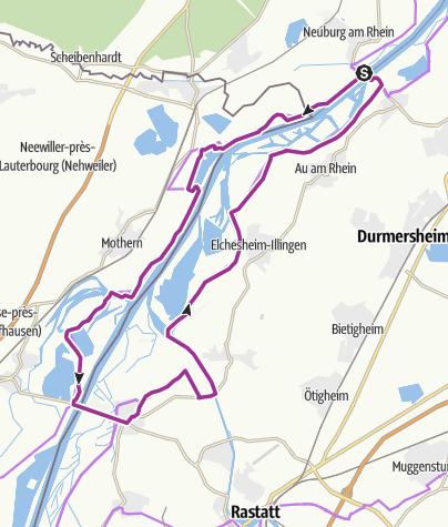 Karte / Neuburg am Rhein Rundfahrt mit Fähre
