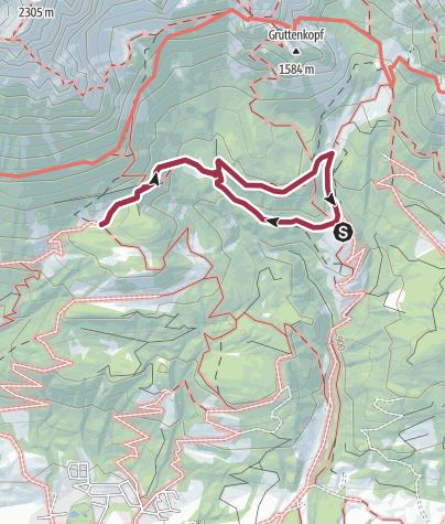 Karte / Von der Wochenbrunner Alm ,über den Ellmauer - Steinkreis zur Riedlhütte.