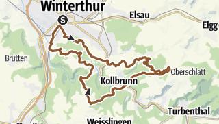 1 bis 1.5 Zimmer Wohnung mieten in Winterthur - schulersrest.com
