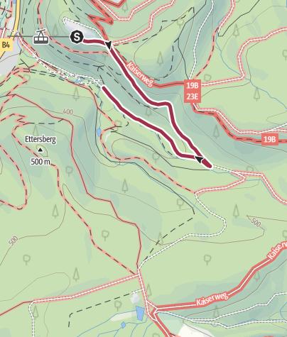 Karte / Großer Burgberg - Baumwipfelpfad | Leichte Strecke(n) | Rundwanderweg