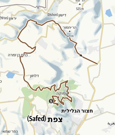 מפה / סינגל יער ביריה ונחל דישון