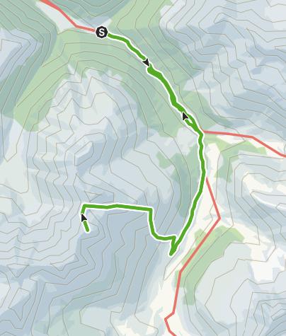 Karte / Piz Amalia, 2'918 m
