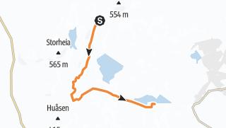 Térkép / Faunakartlegging - Linje 4 - Vintervasshøgda