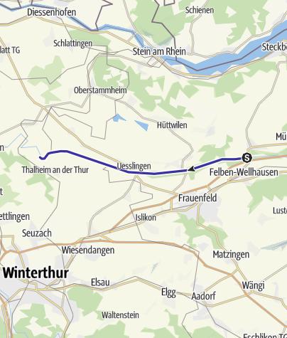 Karte / Pfyn - Gütighausen
