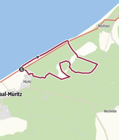 Karte / Das Große Moor bei Graal-Müritz an der Ostsee