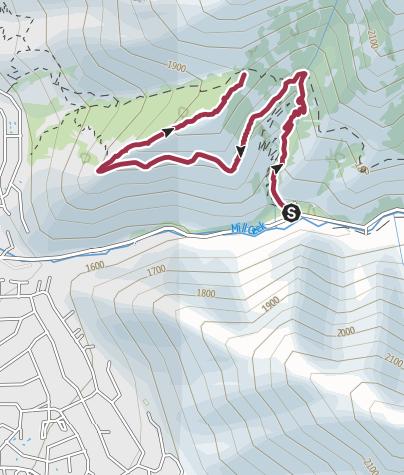 Map / Rattle snake gulch pipeline