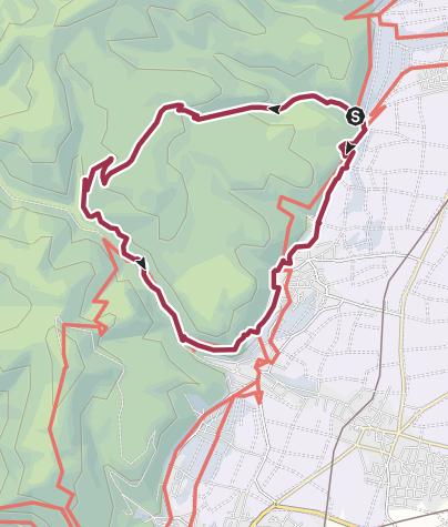 Karte / Deidesheim - Eselsweg