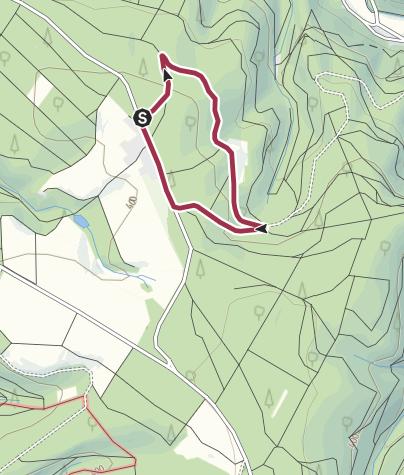 Karte / Kastanienwäldchen bei Wintrich an der Mosel