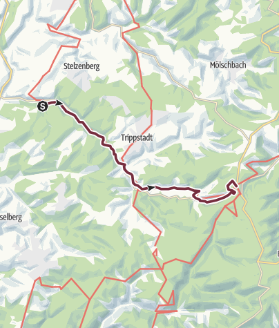 Karte / Pfälzer Waldpfad Etappe 02 Finsterbrunnertal - Johanniskreuz
