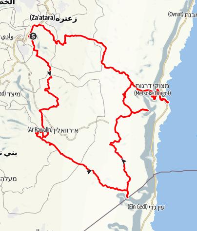 Kart / טיול באיזור מדבר יהודה