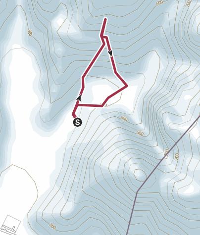 Map / Wadi Oasis