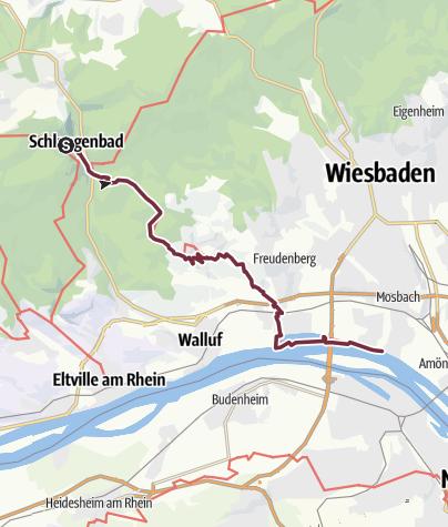 Karte / Rheinsteig 21. Etappe Schlangenbad - Wiesbaden-Biebrich (Nord-Süd)