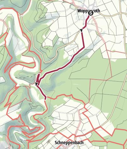 Karte / Soonwaldsteig - Zuweg Woppenroth