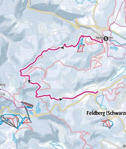 Karte / Von Hinterzarten über den Rinken nach Bärental