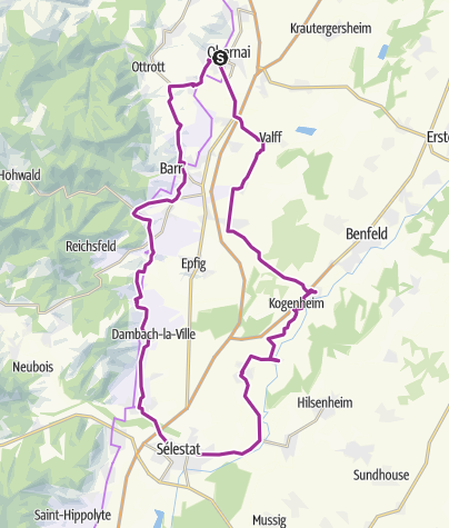 Carte / Route, 5/08 chatenois selestat